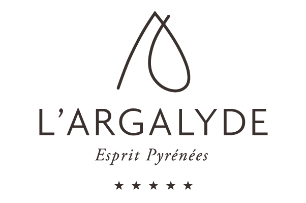 Logo-Avec-étoiles-sans-fond-site-Web